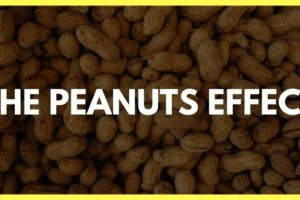 The Peanuts Effect | Why the Small Things Aren't Small